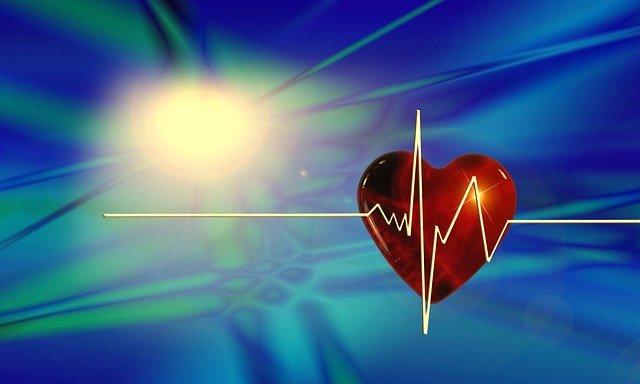 Всемирный день здоровья  (World Health Day)