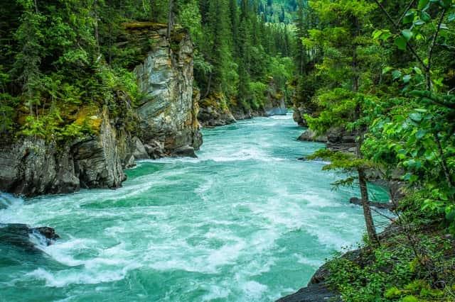 Международный день рек (Международный день действий против плотин)