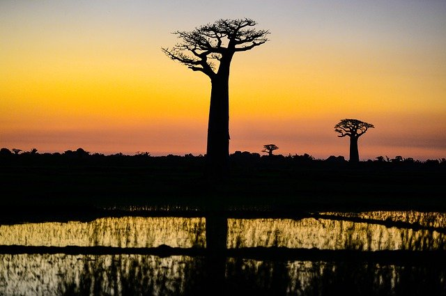 День республики – Мадагаскар