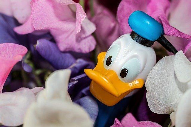 Национальный день Дональда Дака (National Donald Duck Day) - США