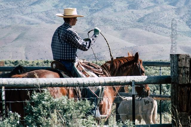 Национальный день ковбоя (National Day of the Cowboy) в США