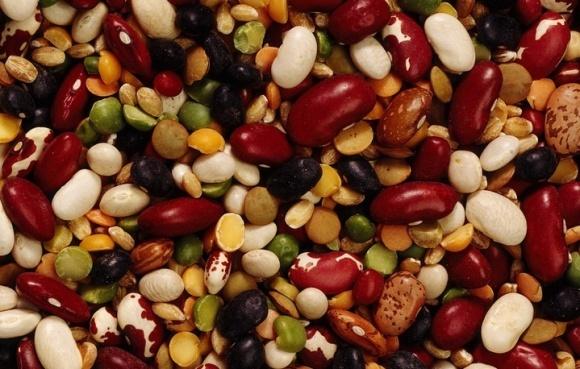 Всемирный день зернобобовых культур