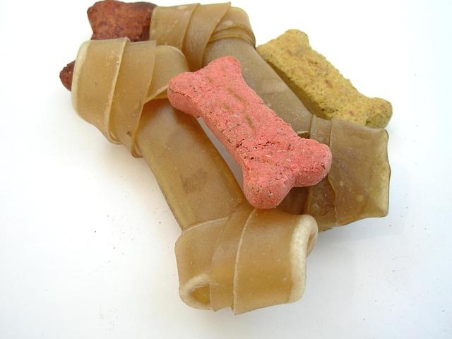 Международный день собачьего печенья