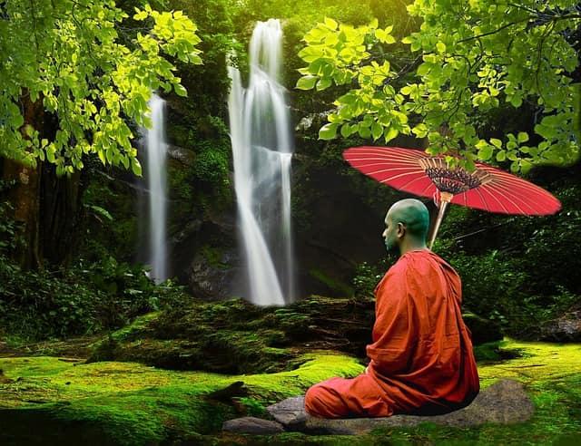 День осознанности (Mindfulness Day)