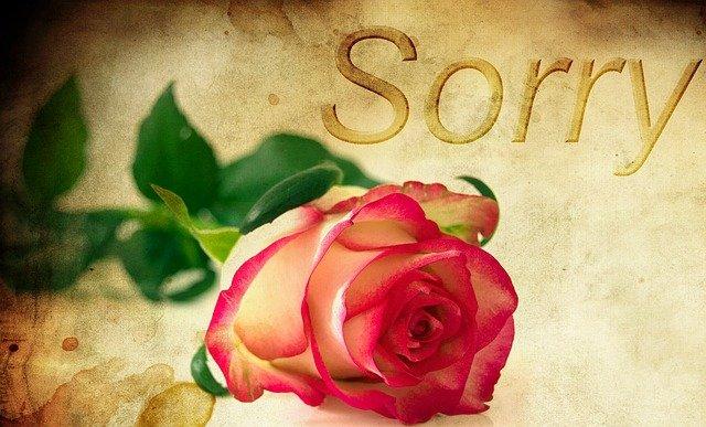 День извинений или День помилования (Pardon Day)