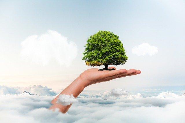 Всесвітній день екологічного боргу (Earth Overshoot Day, Ecological Debt Day)