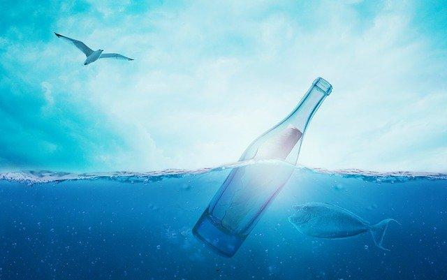 День бутылки мира