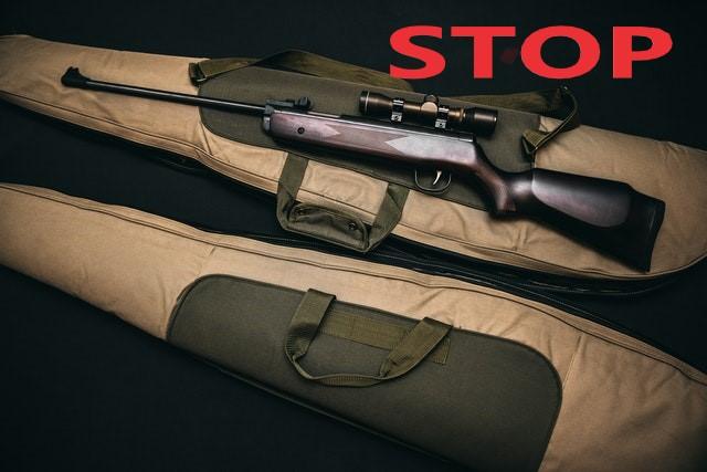 Международный день уничтожения оружия (International Gun Destruction Day)